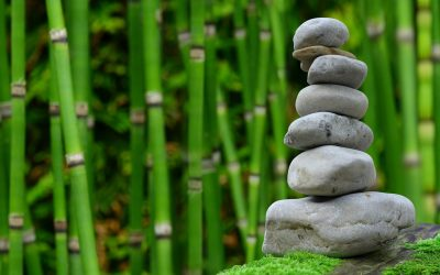 Which Is Better for Writers – Meditation or Exercise?